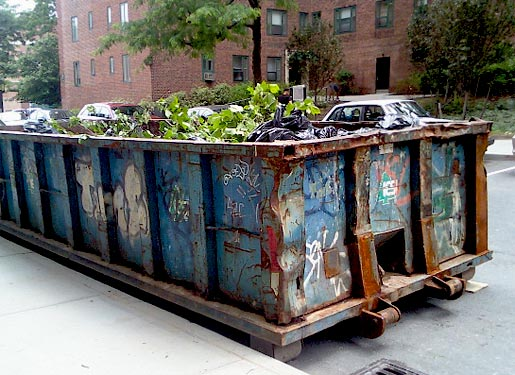 stuy-town-dumpster-6-7-09